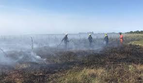 Incendio reserva de punta lara en-fe 2018