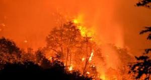 Gran Chaco - Incendio